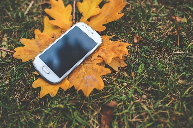 落ち葉の上のアイフォン