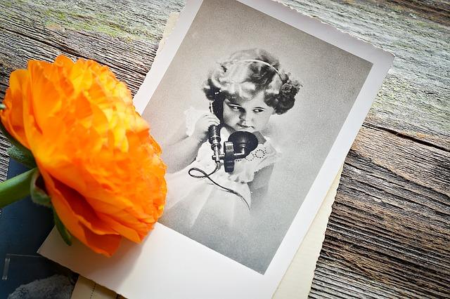お花と写真